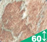 Dekory-stoleshnits-33